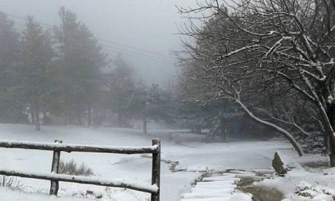 Καιρός: Παράταση της κακοκαιρίας ως το Σάββατο δείχνει η ΕΜΥ, χιόνια και στην Πάρνηθα
