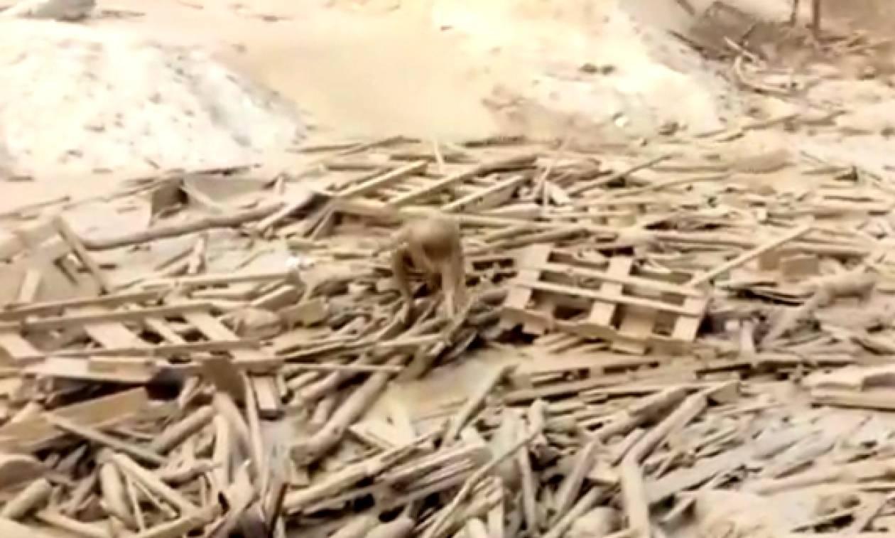 Συγκλονιστικό βίντεο: Γυναίκα βγαίνει ζωντανή από χείμαρρο λασπόνερων