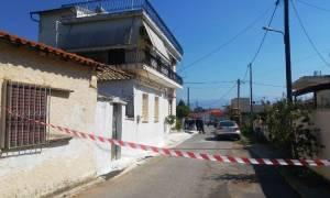 Συγκλονίζουν οι λεπτομέρειες της διπλής οικογενειακής τραγωδίας στη Μεσσήνη (vid)