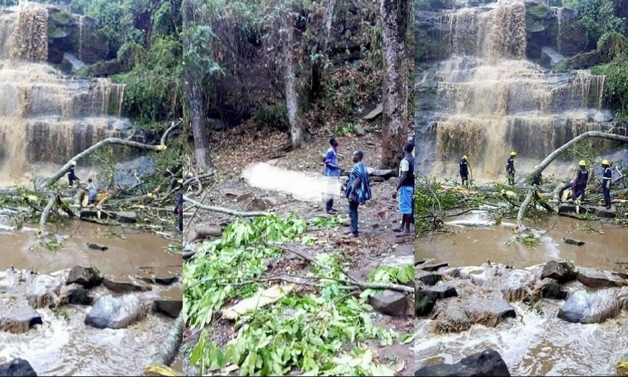 Φριχτό δυστύχημα στην Γκάνα: 20 άνθρωποι σκοτώθηκαν από την πτώση δέντρου (Pics+Vid)