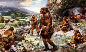Νέα μελέτη: Τριχωτούς ρινόκερους έτρωγαν οι Νεάντερταλ 50.000 χρόνια πριν!