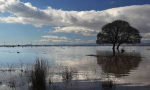 Υπόθεση Βατοπεδίου: Η αθώωση και τα μελανά πολιτικά παιχνίδια με τη λίμνη Βιστωνίδας