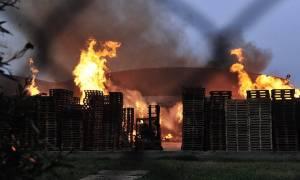 Οινόφυτα: Υπό έλεγχο η πυρκαγιά στον προαύλιο χώρο εργοστασίου