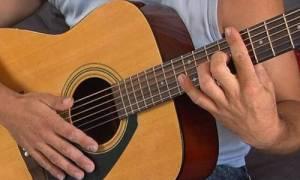Πρώην βουλευτής το έριξε στην... κιθάρα (Δείτε το βίντεο)