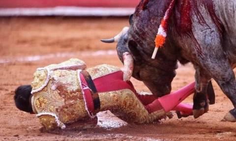 ΒΙΝΤΕΟ ΣΟΚ: Ταύρος καρφώνει ματαντόρ στα... οπίσθια!