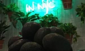 Νέα Υόρκη: Εστιατόριο – bar αφιερωμένο στο... αβοκάντο!