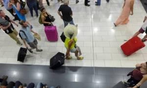 Ετήσια αύξηση 2,8% στις αφίξεις τουριστών τον Μάρτιο