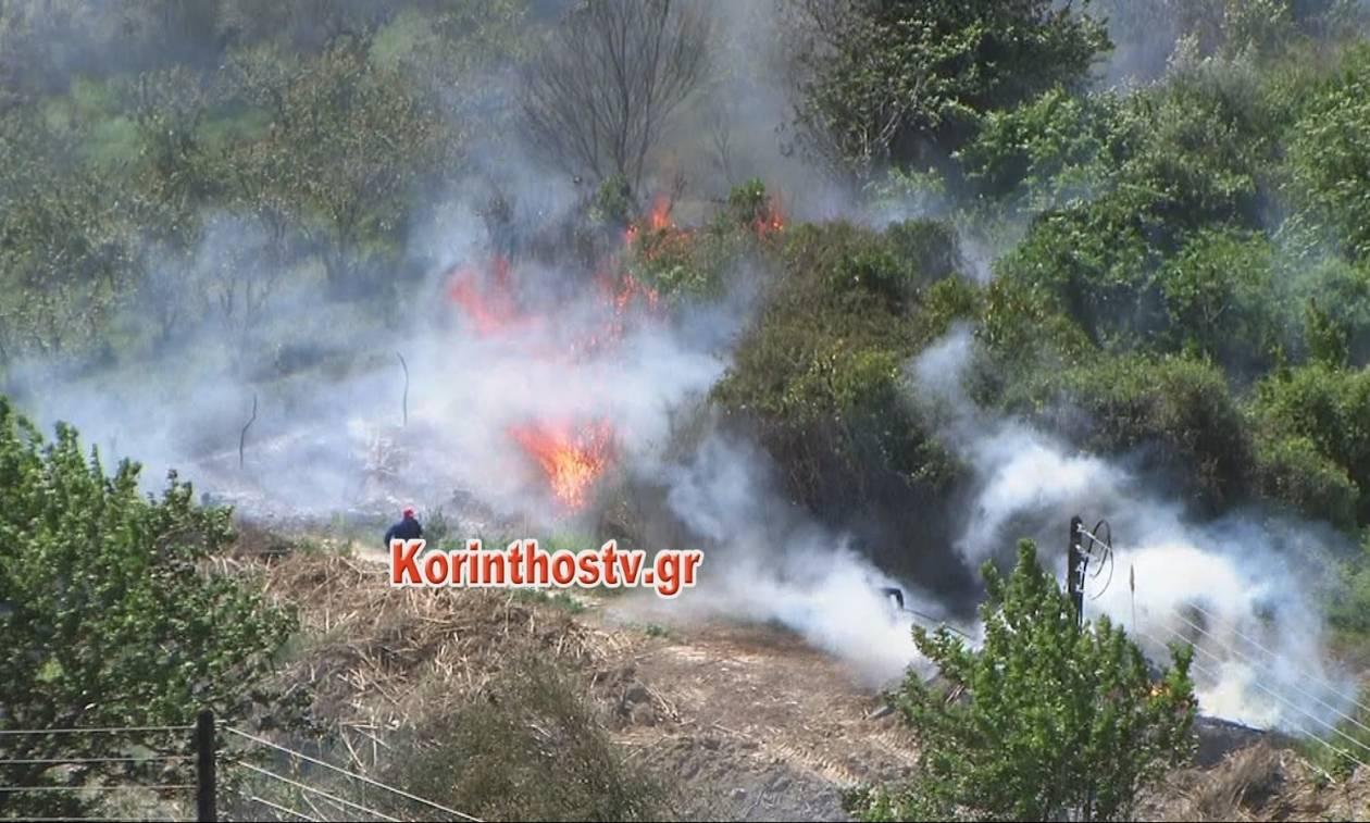 Μεγάλη φωτιά σε χαράδρα στην Κόρινθο (pics&vid)