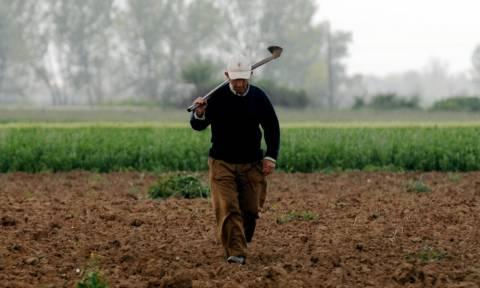 Κόκκινα αγροτικά δάνεια: Έτσι θα γίνει η διαγραφή τους