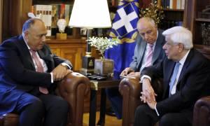 Προκόπης Παυλόπουλος: Οι Έλληνες στηρίζουμε τη σταθερότητα της Αιγύπτου