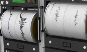 Σεισμός ΤΩΡΑ στη Θεσσαλονίκη: Δείτε τι καταγράφουν LIVE οι σεισμογράφοι