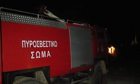 Υπό μερικό έλεγχο η φωτιά στην Πούντα Αιγιαλείας - Κατασβέστηκε η πυρκαγιά στα «Μάρμαρα»