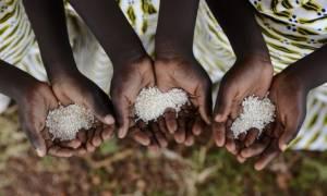 Περίπου 1,4 εκατομμύρια παιδιά αντιμετωπίζουν οξύ πρόβλημα υποσιτισμού στη Σομαλία,
