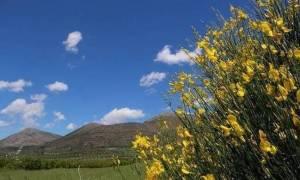 Καιρός σήμερα: Με ήλιο και καλοκαιρινές θερμοκρασίες η Πέμπτη (pics)