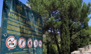 Δασικοί χάρτες: Δωρεάν οι αντιρρήσεις για ΟΤΑ Α' και Β' βαθμού