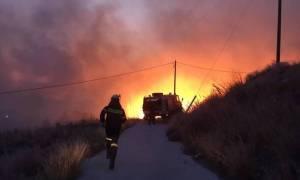 Υπό μερικό έλεγχο η φωτιά στο Σούλι Λακωνίας