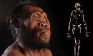 Συγκλονιστική ανακάλυψη: Οι άνθρωποι μοιράζονταν τον κόσμο με… (video)