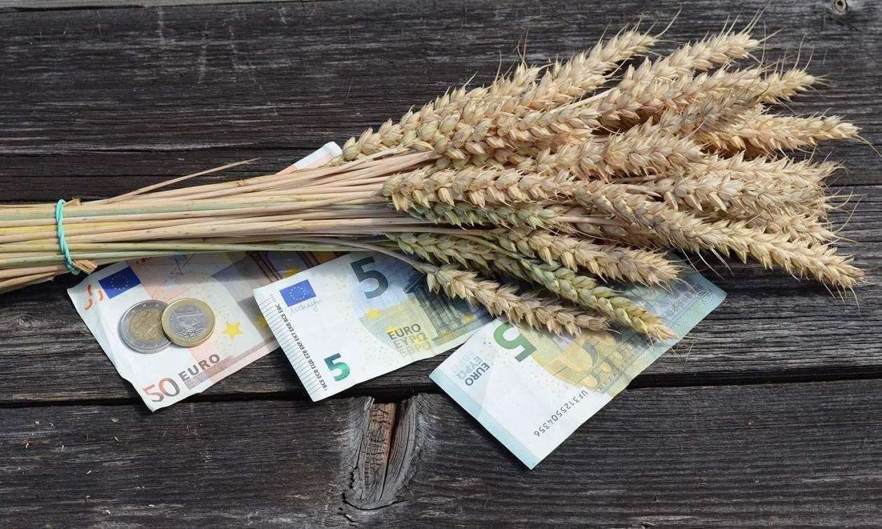 ΕΛΓΑ: Αποζημιώσεις περίπου 11 εκατ. ευρώ σε 9.772 δικαιούχους