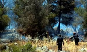 Μεγάλη φωτιά κοντά σε κατοικημένη περιοχή στους Αγίους Θεοδώρους