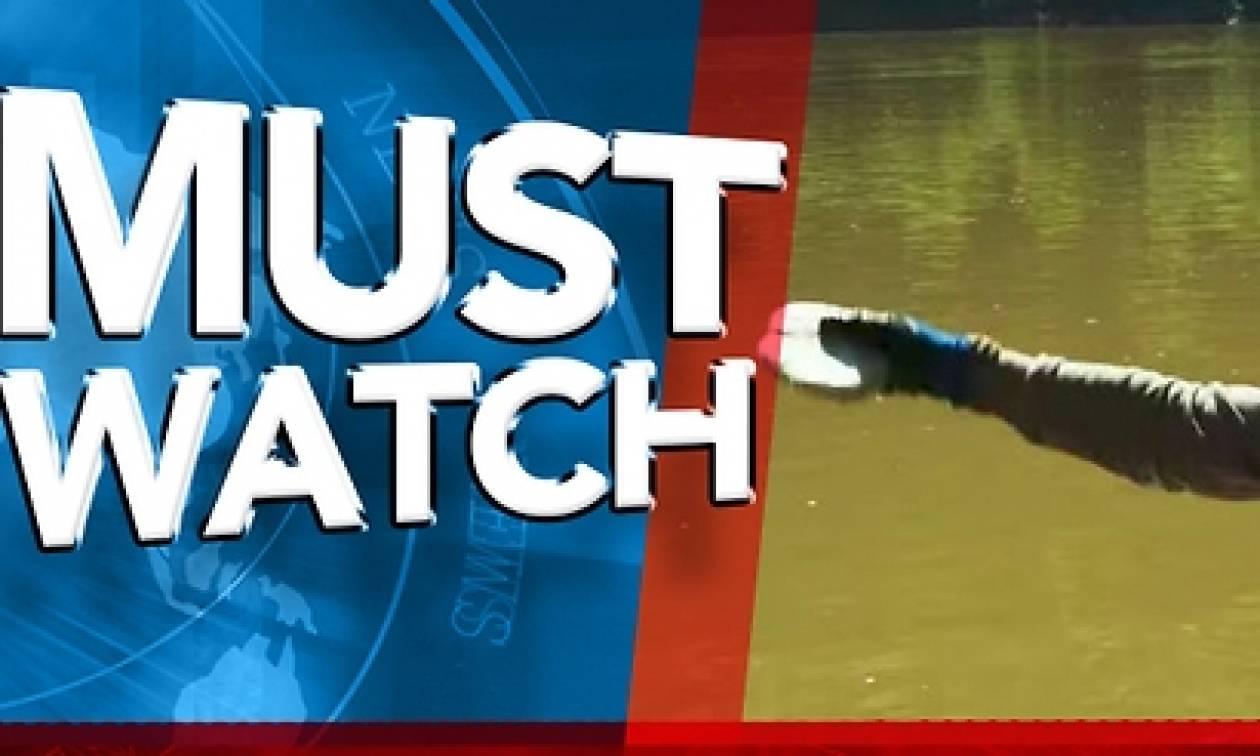 Πετάει μια «πέτρα» από νάτριο σε μια λίμνη. Αυτό που θα γίνει δεν θα το πιστεύετε... (Video)