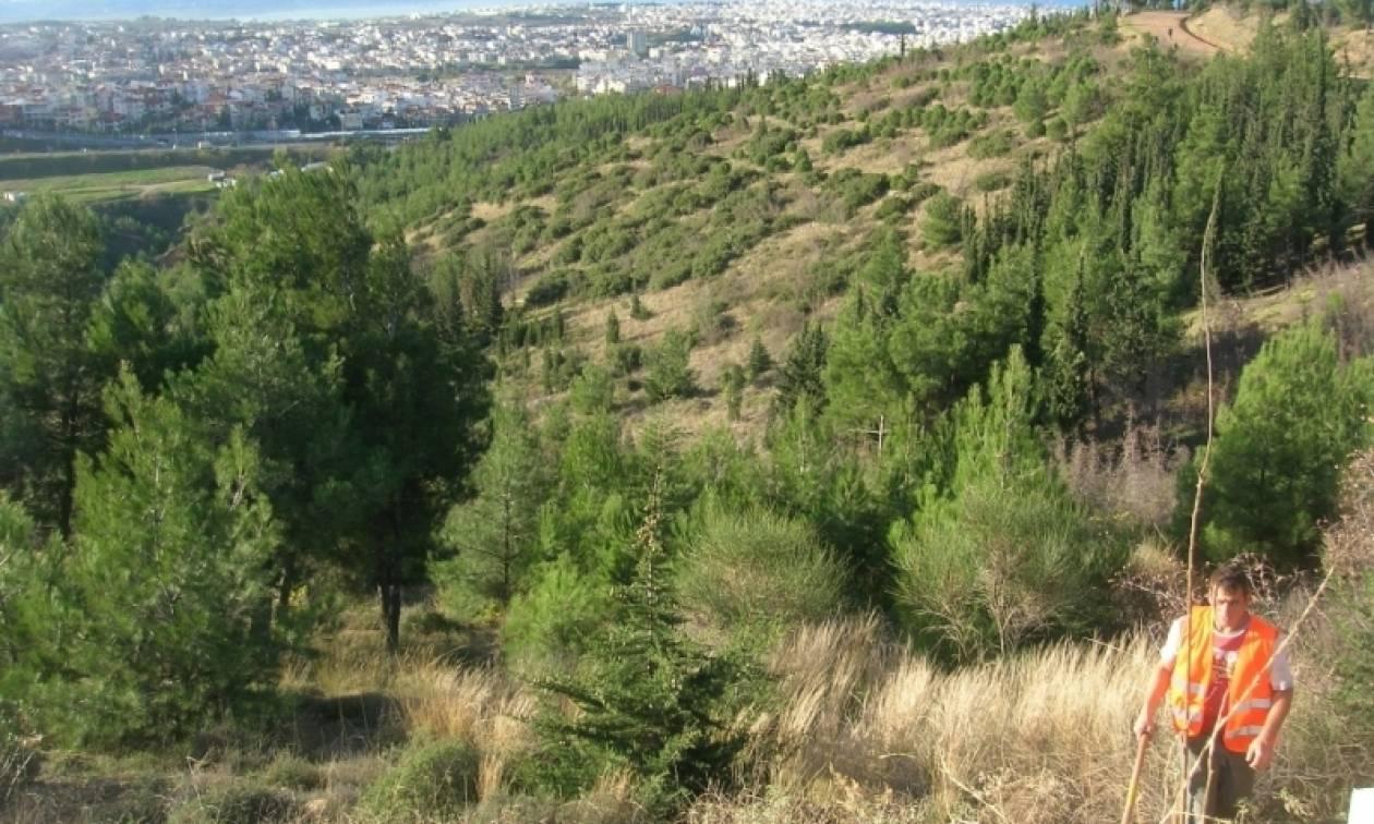 Συναγερμός στη Θεσσαλονίκη: Βρέθηκε βλήμα στο Σέιχ Σου