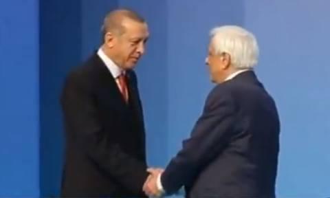 Η χειραψία Παυλόπουλου - Ερντογάν στην Κωνσταντινούπολη (vid)