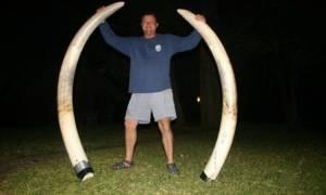 Ελέφαντας καταπλάκωσε και σκότωσε κυνηγό που τον πυροβόλησε