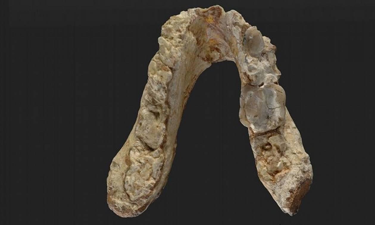 Νέα έρευνα: Ο πρώτος άνθρωπος ίσως να εμφανίσθηκε στην Ελλάδα!