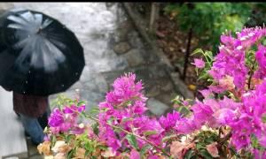 Καιρός ΕΜΥ: Σαββατοκύριακο με... ομπρέλα! Ισχυρές βροχές και καταιγίδες τις επόμενες ώρες