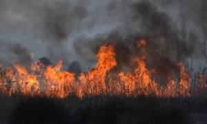 Μεγάλη φωτιά στο Ναύπλιο κοντά σε κατοικημένη περιοχή