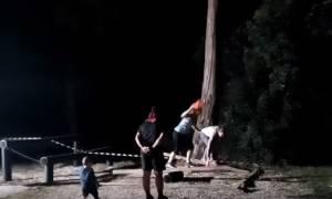 Survivor: Δείτε τι έκανε μια παρέα από τα Χανιά! (vid)