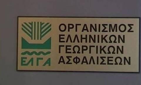 ΕΛΓΑ: Σήμερα οι αποζημιώσεις σε αγρότες ύψους 17,8 εκατ. ευρώ