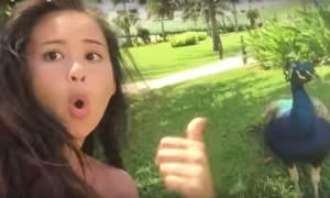 Viral: Αυτά είναι τα καλύτερα Fail βίντεο της εβδομάδας που πέρασε (Όταν όλα πάνε στραβά)