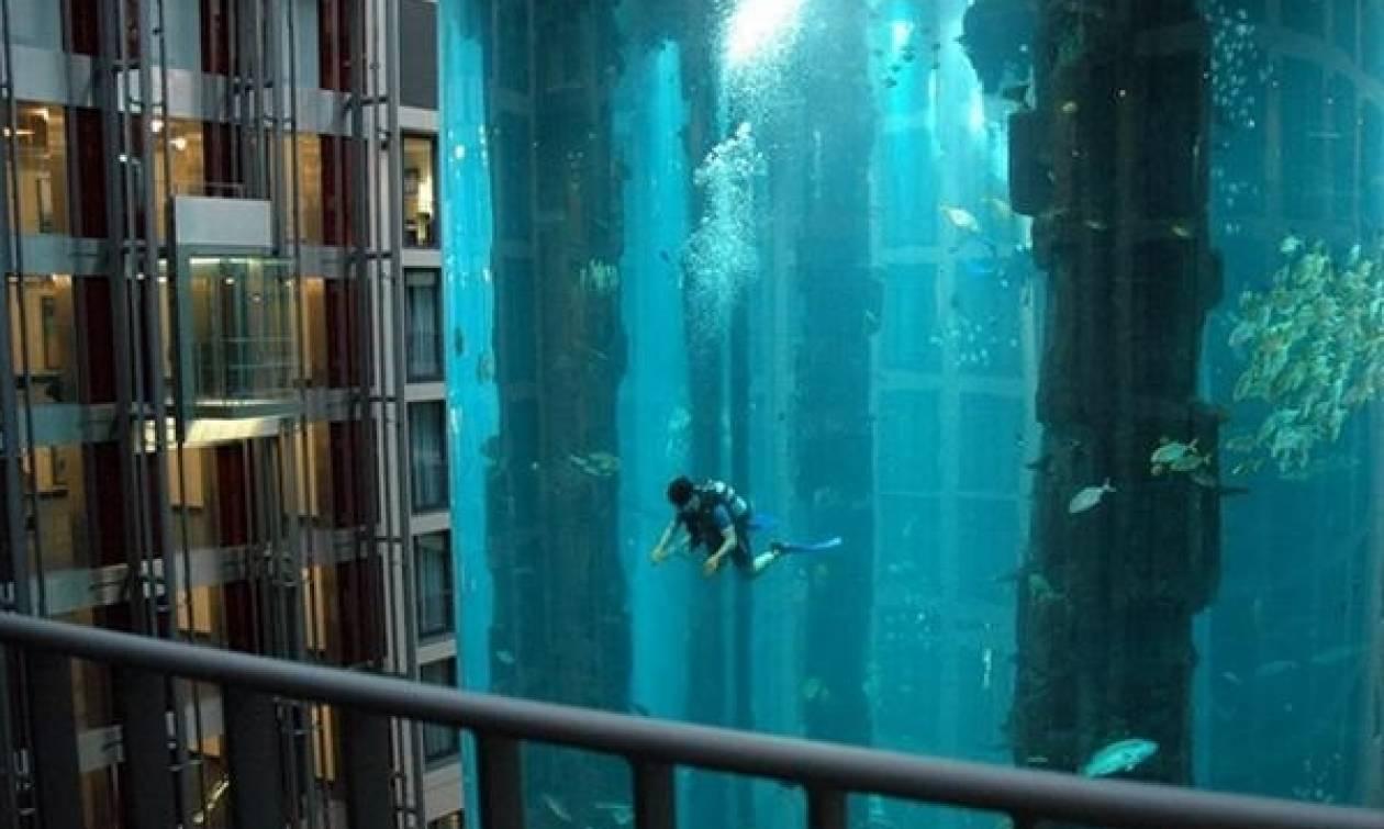 Ανοίγει το πρώτο ενυδρείο της παγκόσμιας αλυσίδας Sea Life