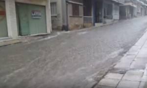 Καιρός: Άνοιξαν οι ουρανοί στη Λαμία - Πλημμύρισαν σπίτια και καταστήματα (pics+vids)