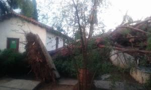 Αργολίδα: Εικόνες καταστροφής από την καταιγίδα (pics)