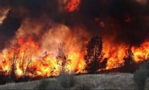 Μεγάλη φωτιά στην Αρήνη Ζαχάρως