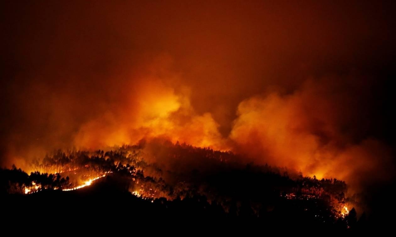 Ανείπωτη τραγωδία και εθνικό πένθος στην Πορτογαλία - Στους 62 οι νεκροί από τη μεγάλη φωτιά (vids)