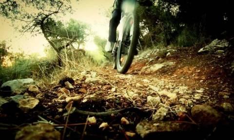 Επικό βίντεο: Έκαναν σεξ στο δάσος και τους έπιασαν στα... πράσα ποδηλάτες