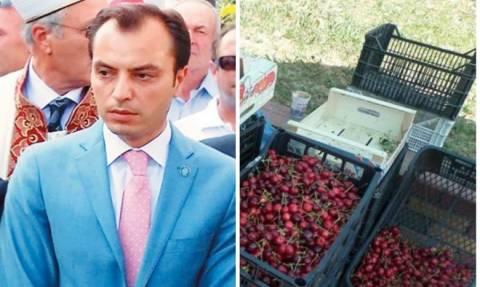 Εταιρείες τουρκικών συμφερόντων βάζουν στο χέρι την αγροτική παραγωγή της Ροδόπης