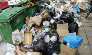 Ζέστη και δυσωδία! Σκουπίδια και καύσωνας απειλούν την υγεία μας