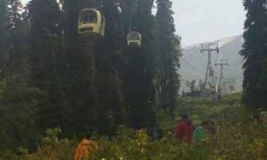 Τραγωδία στην Ινδία: Πεύκο έπεσε σε βαγόνι τελεφερίκ - Τουλάχιστον 7 νεκροί