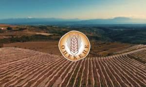 ΟΠΕΚΕΠΕ: Διευκρινήσεις για τη δήλωση αγροτικού εισοδήματος