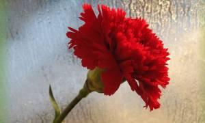 Θρήνος: Πέθανε ο Κώστας Λιάπης