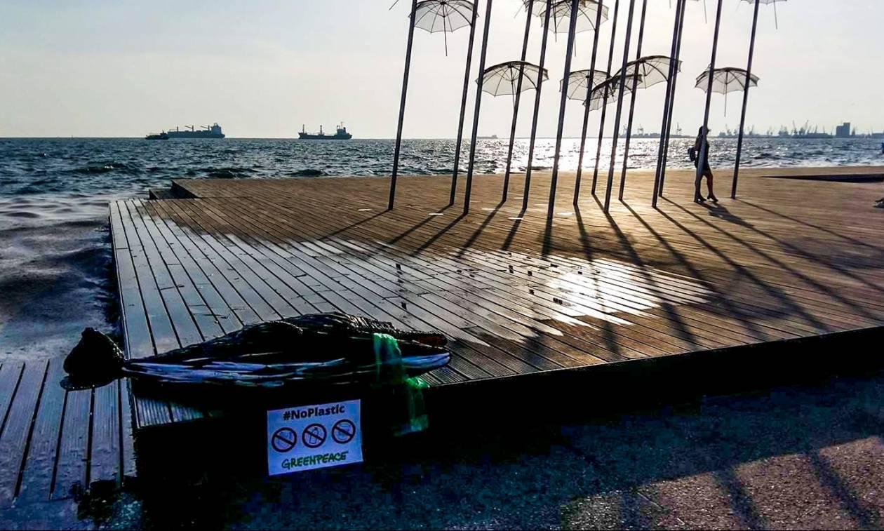 Θεσσαλονίκη: Ένα δελφίνι από ...πλαστικά «ξέβρασε» η θάλασσα στην παραλία της πόλης (pics)
