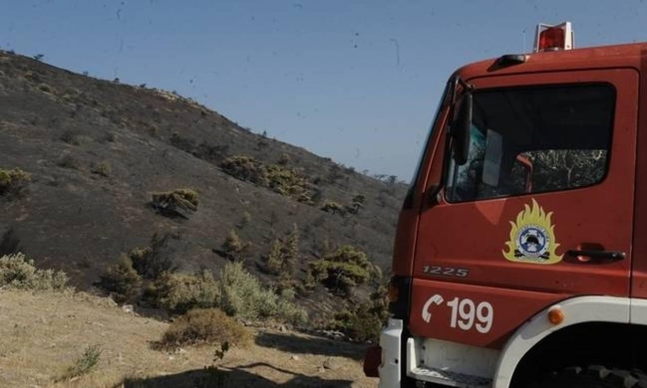 Ο χάρτης πρόβλεψης κινδύνου πυρκαγιάς για την Πέμπτη 29/6 (pic)