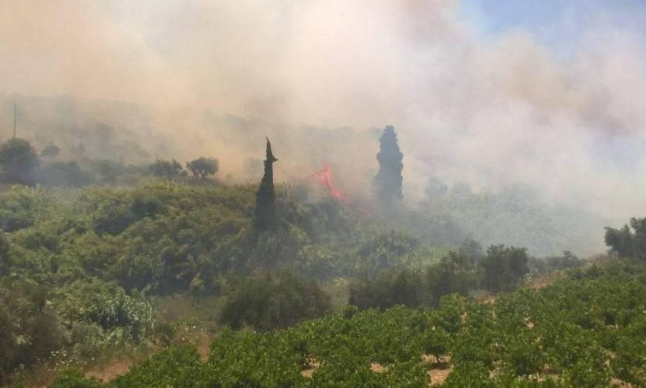 Μεγάλη πυρκαγιά στην Κορώνη Μεσσηνίας - Κοντά σε σπίτια οι φλόγες