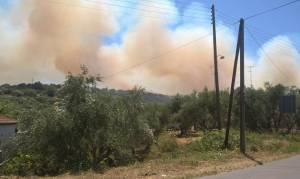 Υπό μερικό έλεγχο η φωτιά στη Μεσσηνία