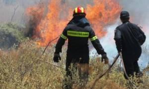 Φωτιά ΤΩΡΑ: Μεγάλη πυρκαγιά στην Κερατέα