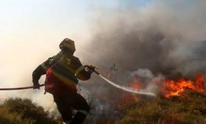 Έσβησε η φωτιά στο Καρά Τεπέ της Μυτιλήνης - «Μαύρισε» ο τόπος